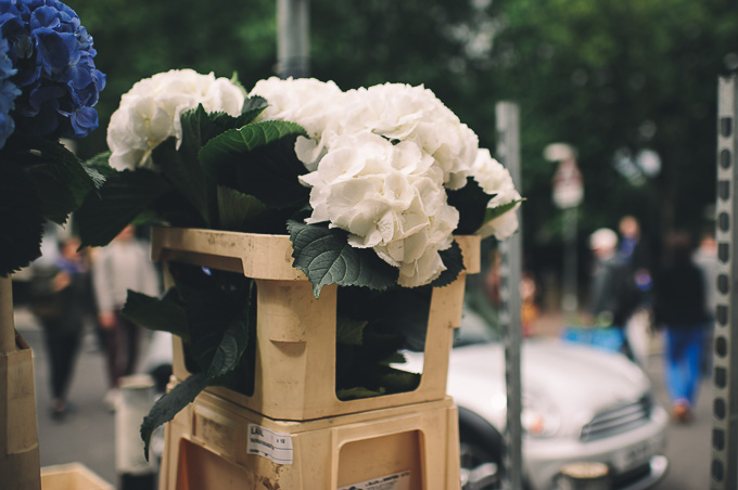 Engagement photography at London Columbia Road Flower Market (17)